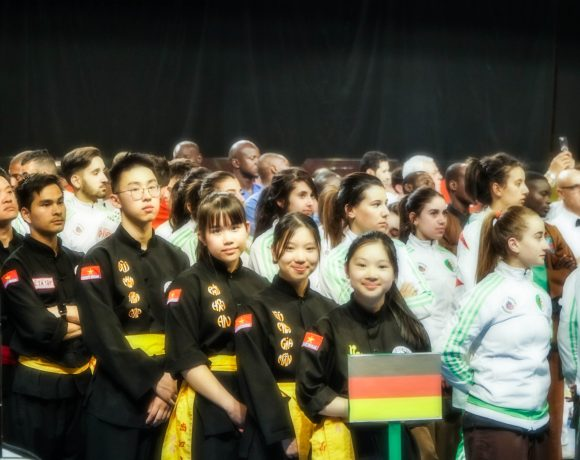 World championship of traditional Vietnamese martial arts in Marseille